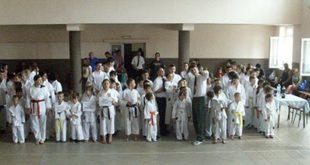 Vidovdanski karate turnir u Zvezdanu okupio veliki broj učesnika