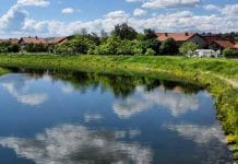 reka timok