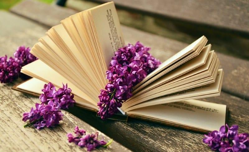knjige-citanje
